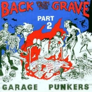 AA.VV. Back From The Grave| Back From The Grave Volume 02