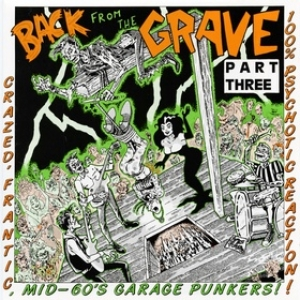 AA.VV. Back From The Grave| Back From The Grave Volume 03