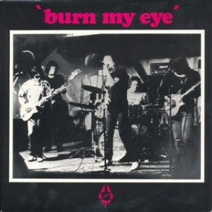 Radio Birdman| Burn My Eyes