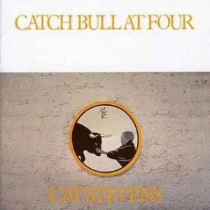 Stevens Cat| Catch Bull At Four
