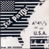 Sex Pistols/Syd Vicious| Anarchy in the u.s.a.