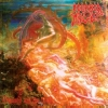 Morbid Angel | Blessed Are The Sick