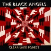 Black Angels| Clear Lake Forest