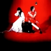 White Stripes | Elephant