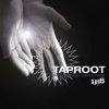 Taproot | Gift