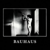 Bauhaus | In The Flat Field