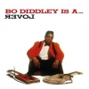 Diddley Bo| Is A Lover