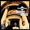 Ocean Colour Scene | Moseley Shoals