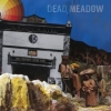 Dead Meadow | The Nothing They Need