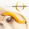 A Perfect Circle | Thirteenth Step