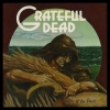 Grateful Dead | Wake Of The Flood