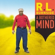 Burnside R.L. | A Bothered Mind