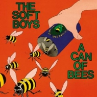 Soft Boys| A Can Of Bees