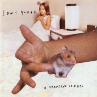 Sonic Youth | A Thousand Leaves
