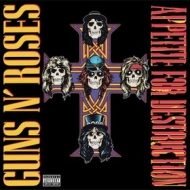 Guns N' Roses | Appetite For Destruction