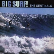 Sentinals | Big Surf