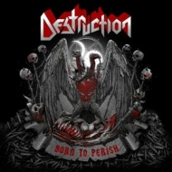 Destruction | Born To Perish