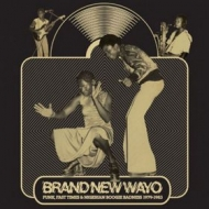 AA.VV.                   | Brand New Wayo: Funk Fast Times And Nigerian Boogie Badness