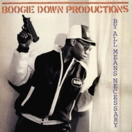Boogie Down Productions| By All Means Necessary