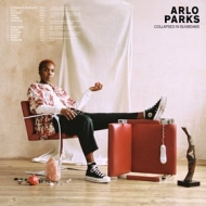 Parks Arlo | Collapsed In SunBeams
