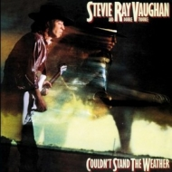 Vaughan Steve Ray | Couldn't Stand The ..