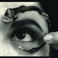 Mr.Bungle | Disco Volante