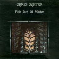 Squjre Chris | Fish Out Of Water