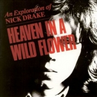 Drake Nick | Heaven In A Wild Flower