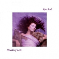 Bush Kate | Hounds Of Love