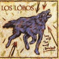Los Lobos | How Will The Wolf Survive?