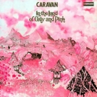 Caravan| In The Land of Grey and Pink