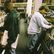 Dj Shadow | Introducing