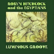 Hitchcock Robyn | Luminous Groove