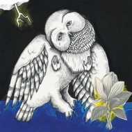 Songs Ohia:| Magnolia Electric Co.