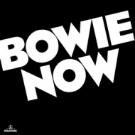 Bowie David | Now