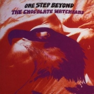 Chocolate WatchBand | One Step Beyond