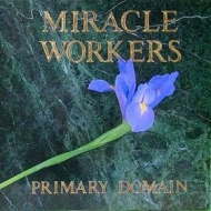 Miracle Workers| Primary Domain