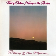 Terry Dolan / Terry & the Pirates| Rising of the Moon