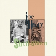 Joe Henry | Shuffletown