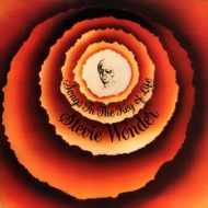 Wonder Stevie | Songs In the Key of Life