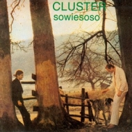 Cluster| Sowiesoso