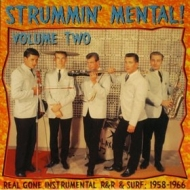 AA.VV. Garage | Strummin' Mental Volume 2