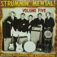 AA.VV. Garage | Strummin' Mental Volume 5