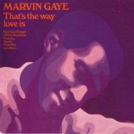 Gaye Marvin | That's The Way Love Is