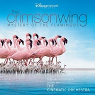 Cinematic Orchestra | The Crimson Wing - Mystery Of The Flamingos