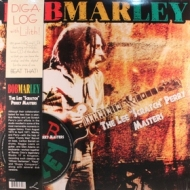 Marley Bob            | The Lee Scratch Perry Masters