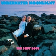 Soft Boys| Underwater Moonlight
