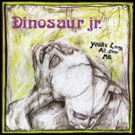 Dinosaur Jr.           | You'Re Living All Over Me